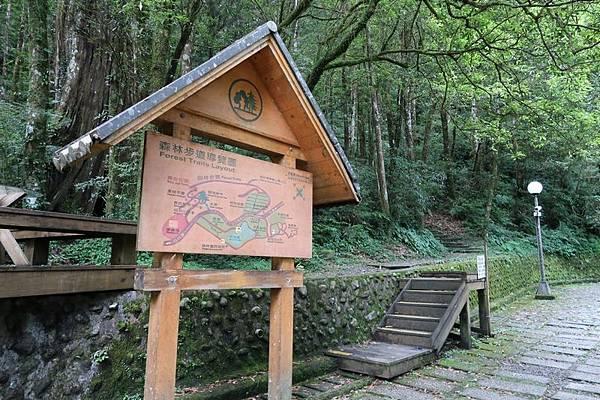 明池森林步道.JPG