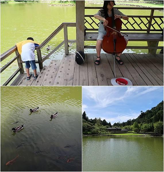 明池湖畔音樂會.jpg