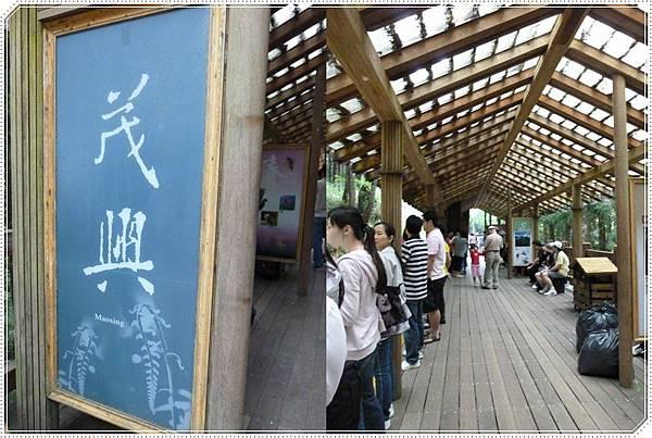 茂興車站2.JPG