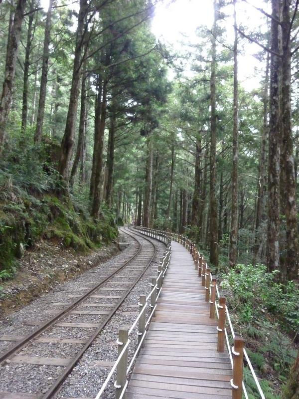 茂興步道6.JPG