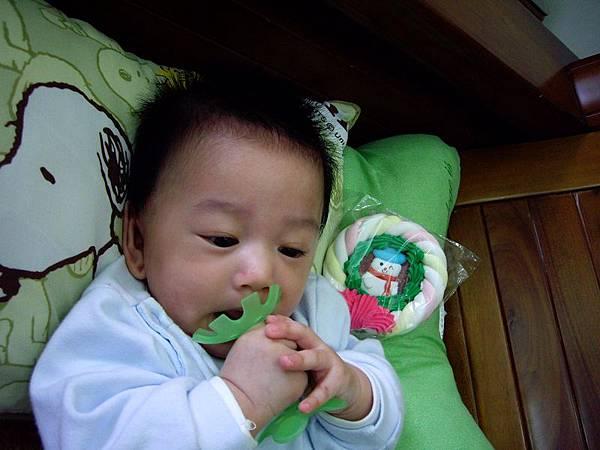 綠的小花.JPG