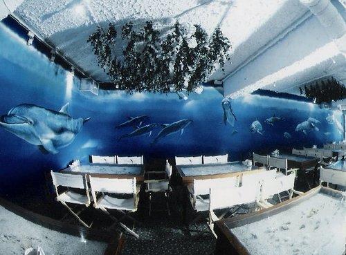 海豚灣.jpg