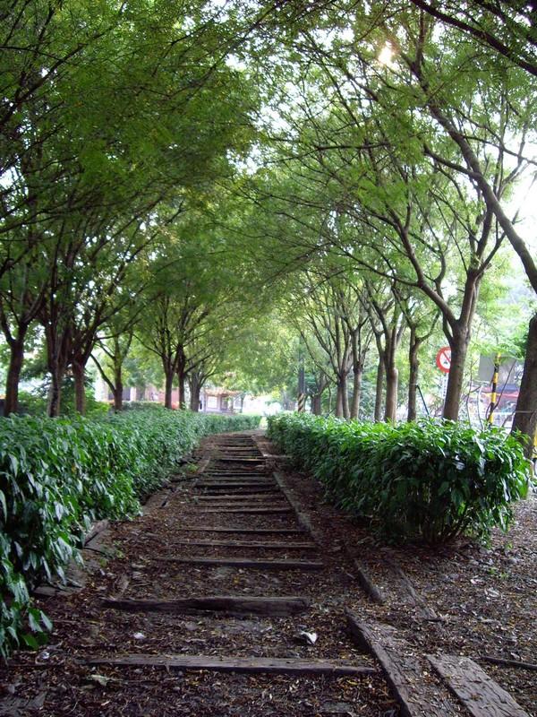 東豐綠色走廊.JPG