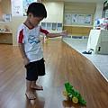 鱷魚.JPG