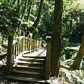 森林知性步道三.JPG