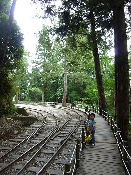 茂興步道3.JPG