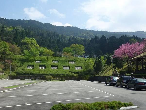 東眼山森林遊樂區.JPG
