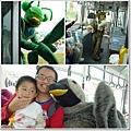 遊行公車.jpg