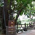 板穚農村公園4.JPG
