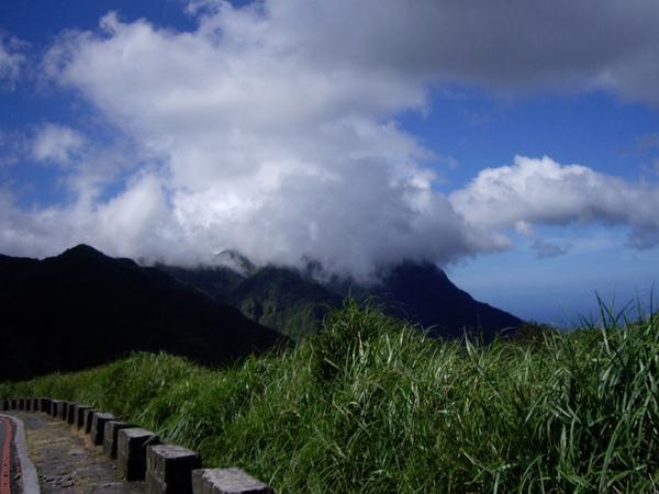 陽明山.JPG