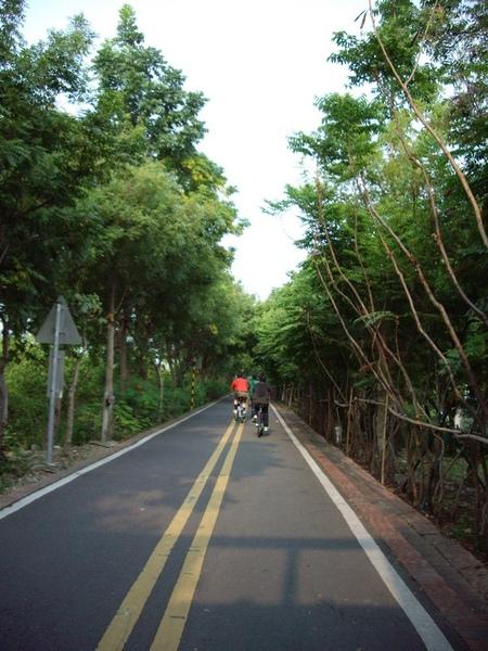 東豐綠色走廊2.JPG