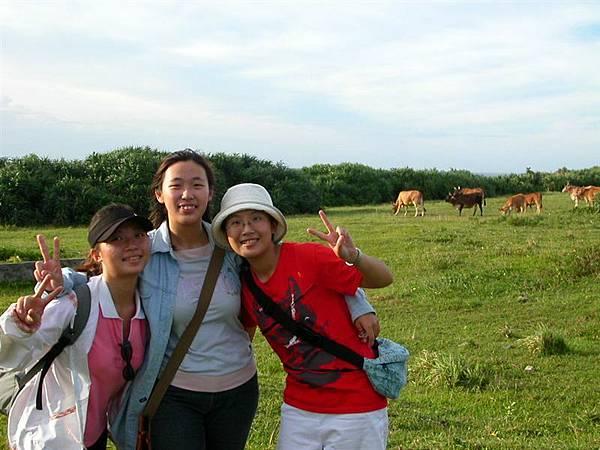 牛頭山草原