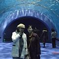 081.海底隧道