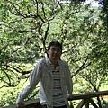 北橫-明池森林遊樂園