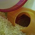 迪西搶了一堆食物就躲回窩裡