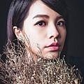 梳化 / 陳品妡 Amanda  Line / aaaaa77777