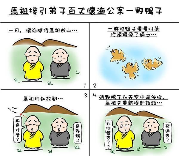野鴨子1.jpg
