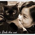 妹妹從日本回來當天看到Didi剛剪完毛