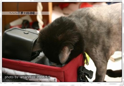 2006.5.5 玩相機袋