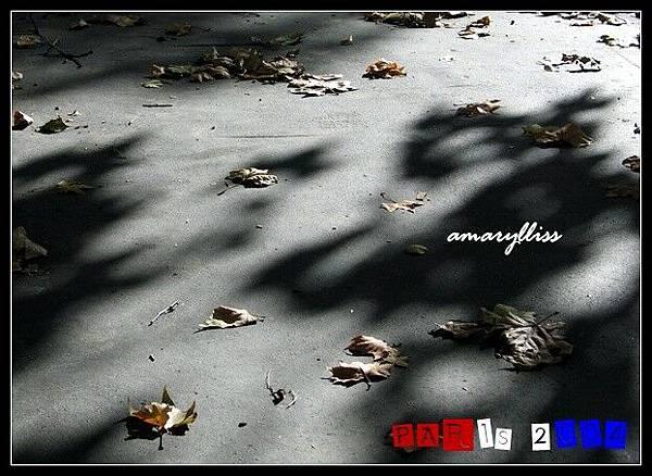 b_leaf