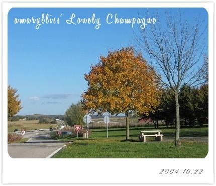 1022-champagne09