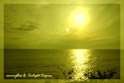 yellow-03.jpg