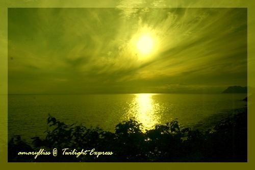 yellow-05.jpg