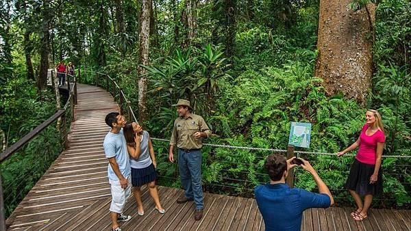 專業的雨林解說員跟遊客分享雨林生態系統的相關知識。.jpeg
