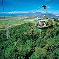 搭上空中纜車‧雨林和珊瑚海的美景盡收眼底。.jpg