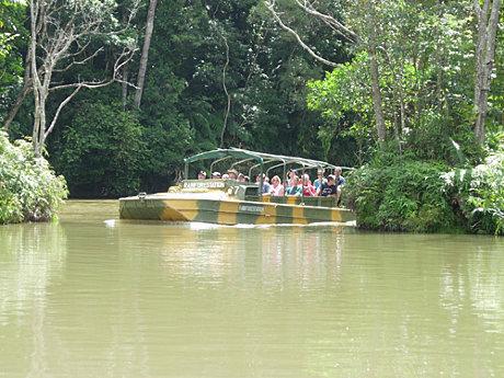 搭乘二戰遺留下來的水陸兩用車深入雨林探險。.jpg
