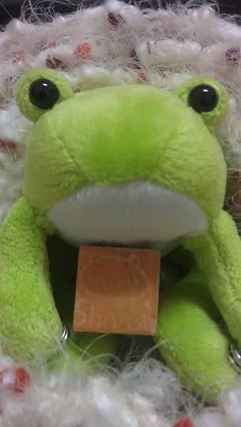 雪嫩蛙.jpg
