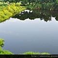 湖悅0096.JPG