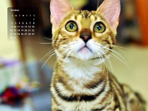 2011年10月份月曆-500.JPG
