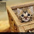 2011年12月份月曆-500.JPG