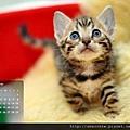 2012年12月份月曆-500