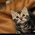 2013年1月份月曆
