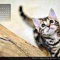 2013年3月份月曆-500