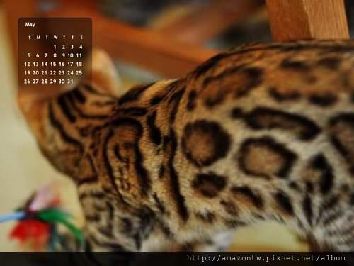 2013年5月份月曆-500