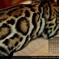 2013年6月份月曆-500