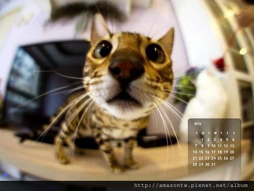 2013年7月份月曆-500.JPG