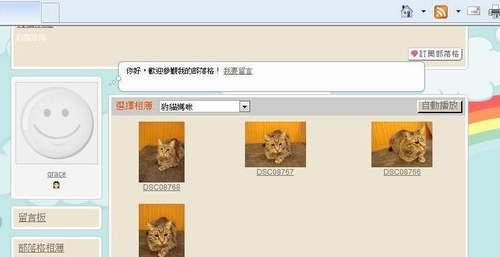 米克斯充當小豹貓販賣11-500.JPG