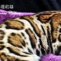 20100514-Famous-0562.JPG