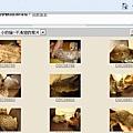 米克斯充當小豹貓販賣13-500.JPG