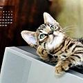 2010年9月曆-500.JPG