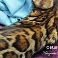 20100514-Famous-0572.JPG