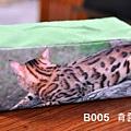 B005 面紙盒 綠 背面.jpg