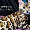 20100514-Famous-0547.JPG