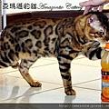 凱薩20110223-0063.JPG