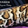 20100514-Famous-0524.JPG