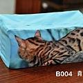 B004 面紙盒 藍 背面.jpg